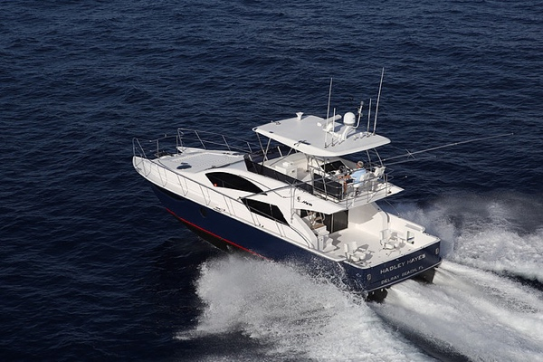 Mares 45 Yacht Fish